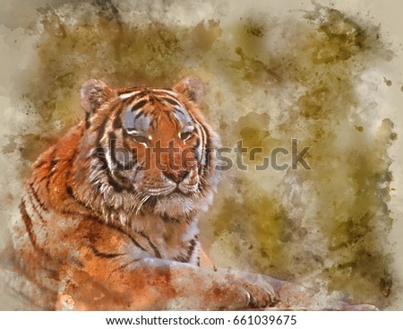 Watercolour painting of Beautiful tiger relaxing on warm day