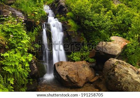 Waterfall among jungle. Beautiful summer landscape - stock photo