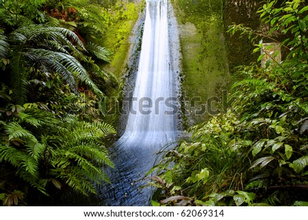 Waterfall flowing down wall in tropical jungle