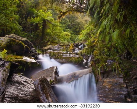 waterfall in a lush new zealand forest - stock photo