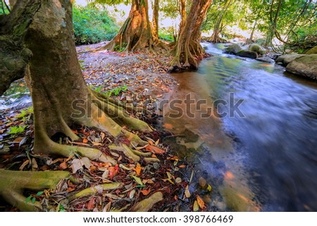 Waterfall in a lush rainforest. - stock photo