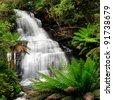 Waterfall in lush ferny rainforest.  XXXL file.  Triplet Falls, Otway Ranges, Victoria, Australia. - stock photo