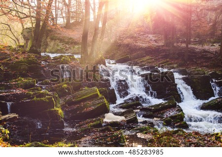waterfall in misty autumn forest at sunset, Harz National Park, Germany