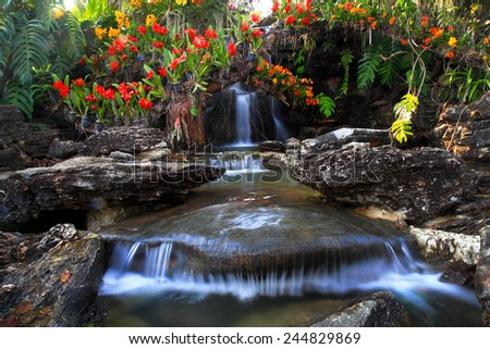 Waterfall in orchid garden  - stock photo