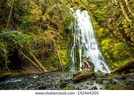 Waterfall in rain forest, Olympic national Park,WA - stock photo