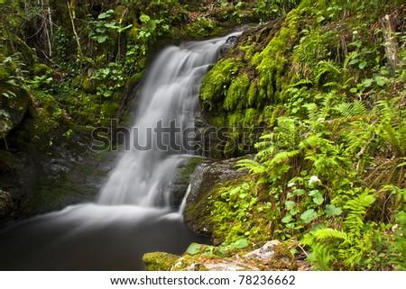 Waterfall in the beech Busmayor, Leon, Spain - stock photo