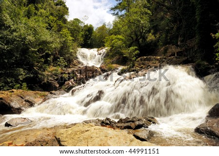 Waterfall in the middle of a forest - stock photo
