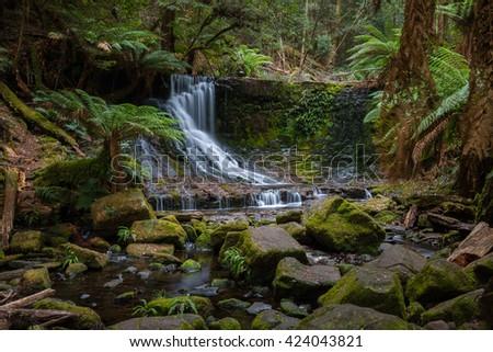 Waterfall in the Tasmanian Wilderness - stock photo