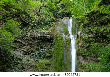Waterfall in tropical forest. Caucasus