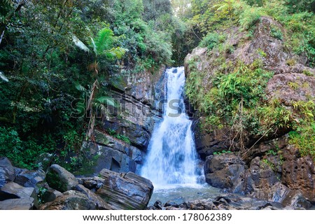 Waterfall in tropical rain forest in San Juan, Puerto Rico. - stock photo