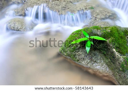 waterfall - moss-covered boulder - stock photo