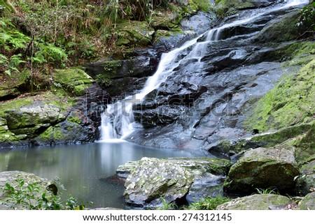 Waterfall near Montville, Sunshine Coast Hinterlands in Queensland. - stock photo