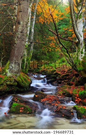 Waterfall on the autumn forest - stock photo