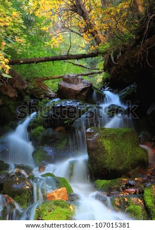 waterfall running down through moss and rocks with autumn leafs and trees/ Autumn Fork Falls - stock photo