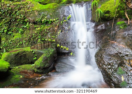 waterfall steps and green moss in Thailand National Park.