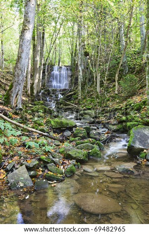 Waterfall with a stream in the deciduous forest