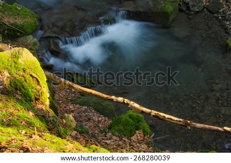 Waterfall with branch - stock photo