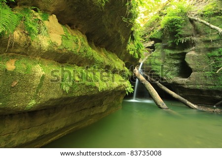 Waterfall with Logs and Green Pond