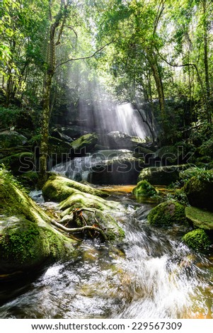 Waterfall with sunbeam in rainforest. - stock photo