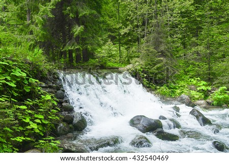 Waterfalls in green forest