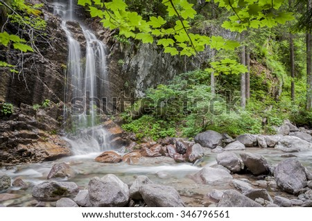 Waterfalls in the undergrowth