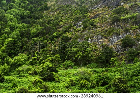 Waterfalls on the north coast of Madeira, Portugal, Europe - stock photo