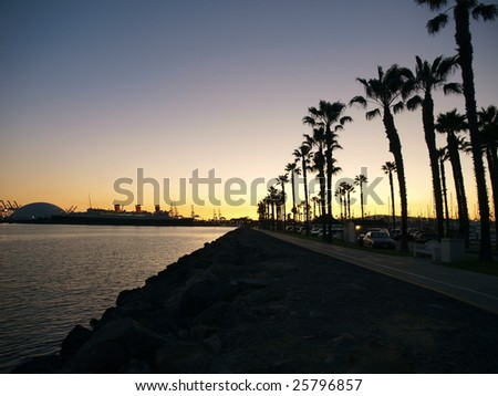 Waterfront palm trees on a Pacific Ocean breakwater.