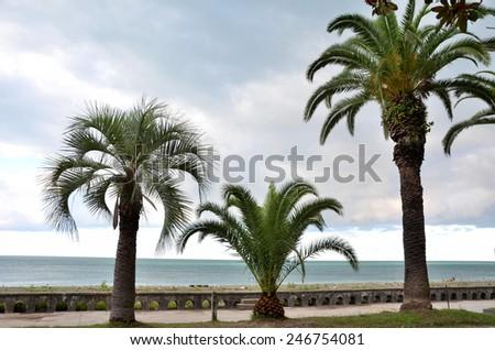Waterfront views Gagra, Abkhazia - stock photo