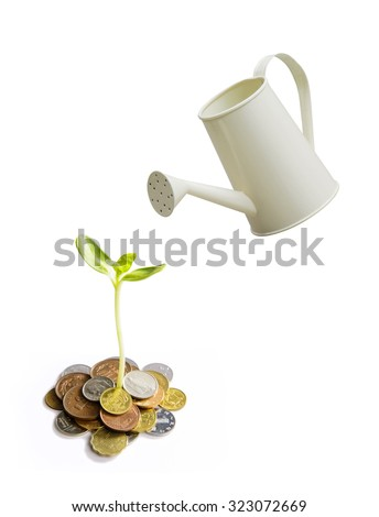 Watering a tree with growing coins - stock photo