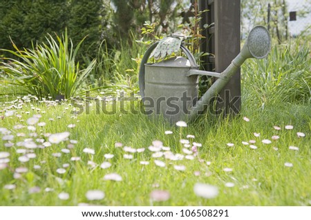 Watering can and garden gloves in garden