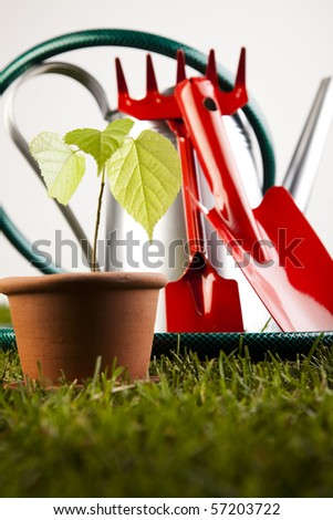 Watering Can And Gardening Tools - stock photo
