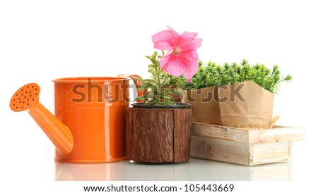 watering can, flower and plants in flowerpots isolated on white - stock photo