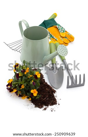Watering can, flowers, protective gloves and equipment for gardening. Isolated on white background. - stock photo