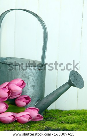 Watering can with tulips on grass on wooden background - stock photo