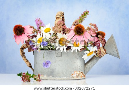 watering can with wildflowers - stock photo