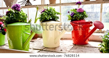 Watering cans, concept of gardening and hobby - stock photo