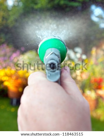 watering flower bed with hose pipe. spraying plants with water in garden - stock photo