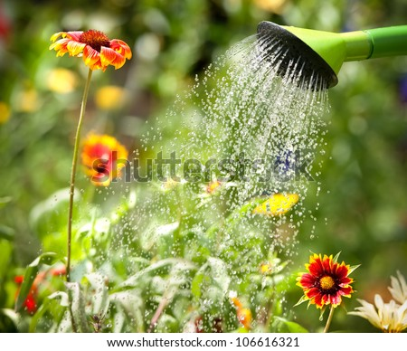 Watering flowers with a watering can - stock photo