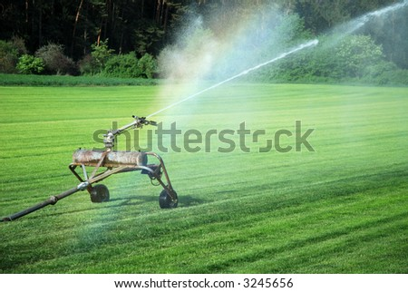 watering grass - stock photo