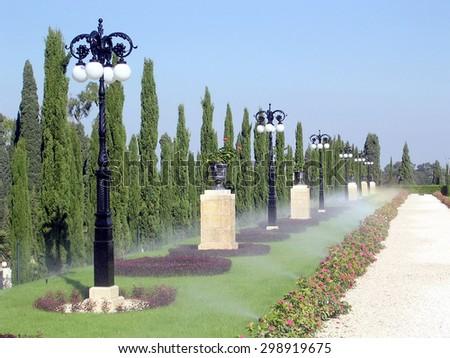 Watering of alley in Bahai garden near Akko, Israel         - stock photo
