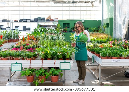 Watering plants in nursery