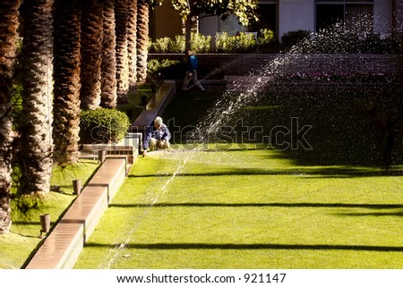 Watering the grass with a sprinkler system (exclsuive at shutterstock)