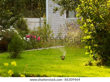 watering the lawn in garden with sprinkler system - stock photo