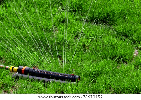 Watering the Lawn with Sprinkler - stock photo