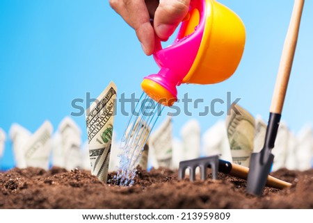 Watering the money sprigs - stock photo