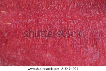watermelon meat texture - stock photo