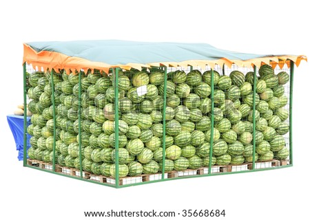 watermelons in the kiosk under the white background - stock photo