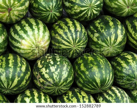 watermelons on farmers market - stock photo