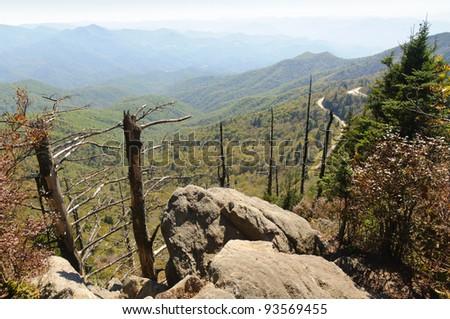 Waterrock Knob overlook, dead trees and rocks - stock photo