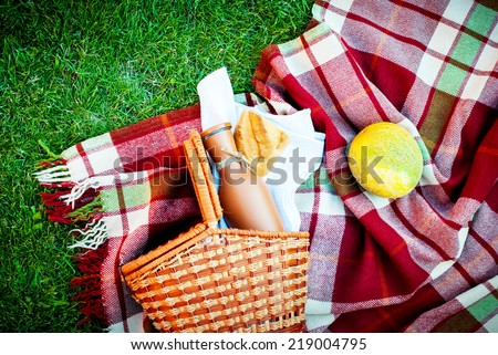 Wattled Basket, Bread, Water melon and Bottle on a Picnic Plaid in Summer Green Grass, selective focus - stock photo